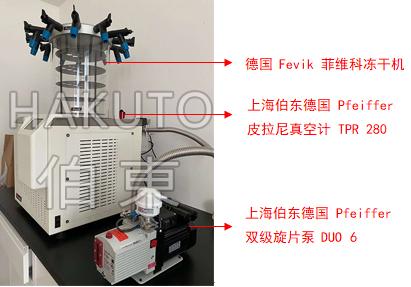 Pfeiffer 双级旋片泵 DUO 6