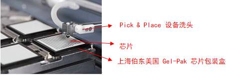 Gel-Pak 芯片包装盒