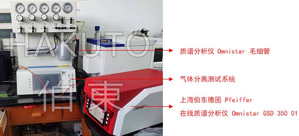 在线质谱分析仪与气体分离测试系统联用